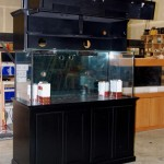 Custom Aquarium Stands and Canopies