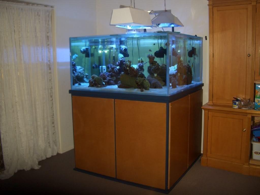 Custom Aquarium Stands DIY