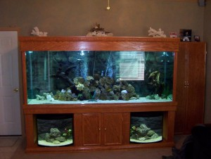Custom Aquarium Stands Made