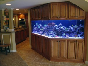 Custom Made Aquarium Stands