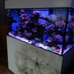 Custom Made Steel Aquarium Stands