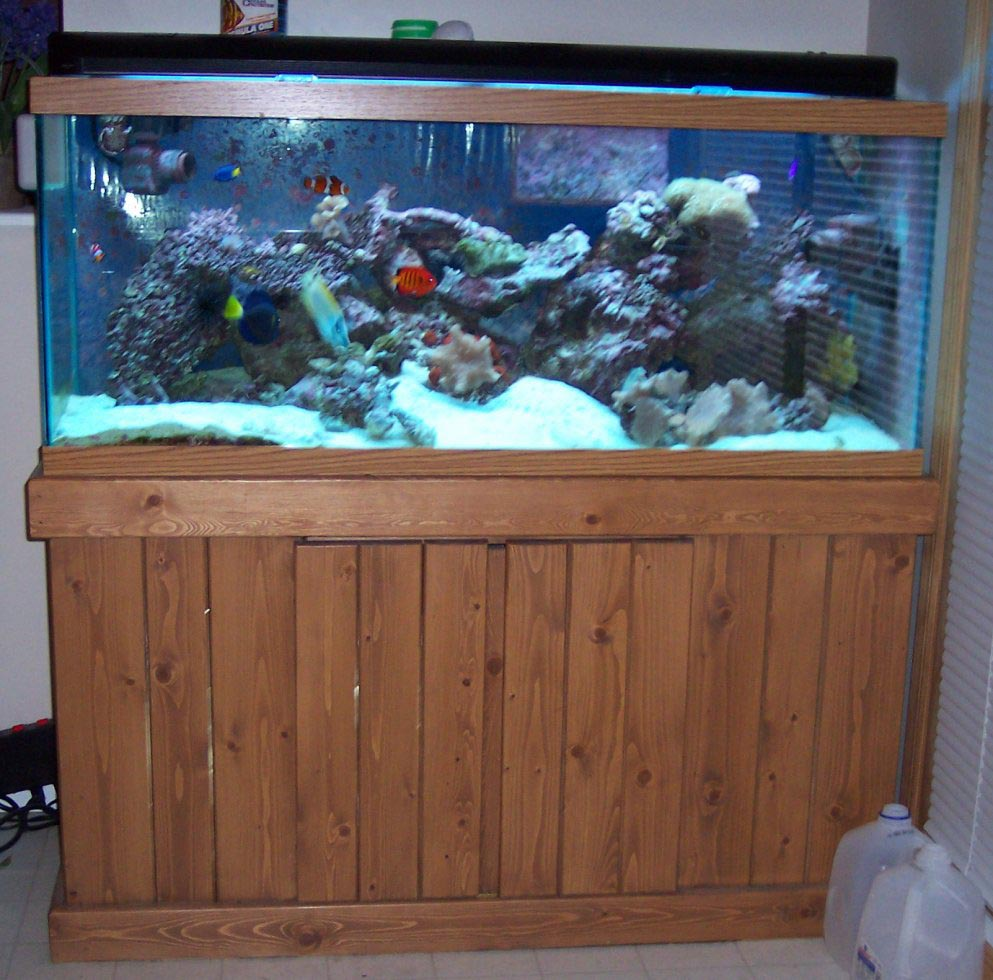 Custom Metal Aquarium Stands