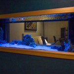 Custom Wall Mounted Aquarium