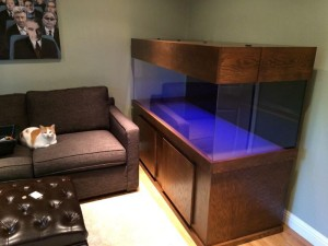 Custom Wood Aquarium Stands
