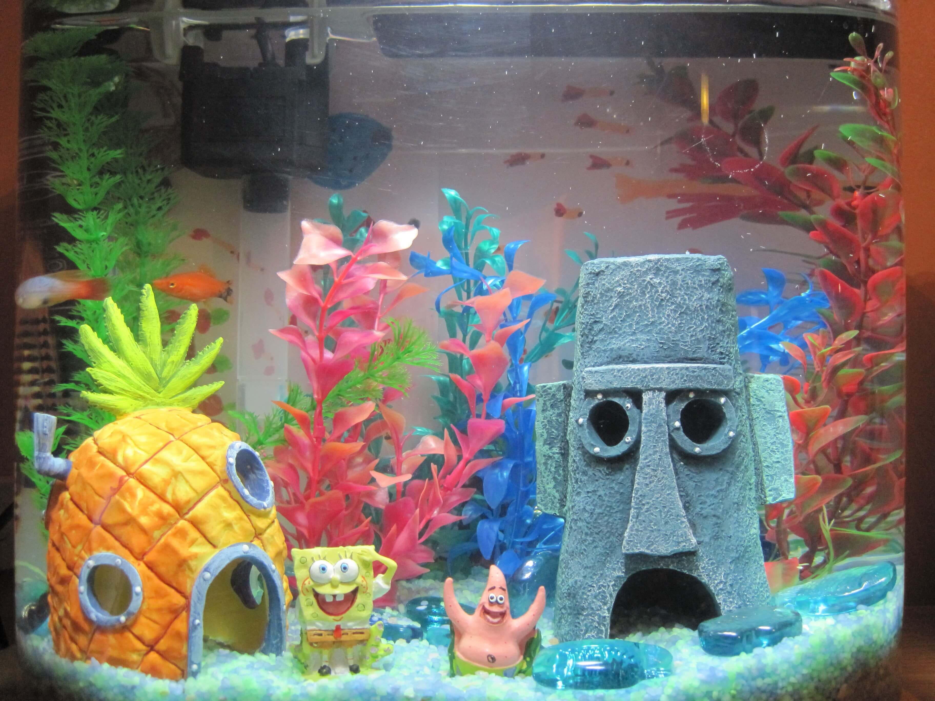 Decor for Fish Aquarium