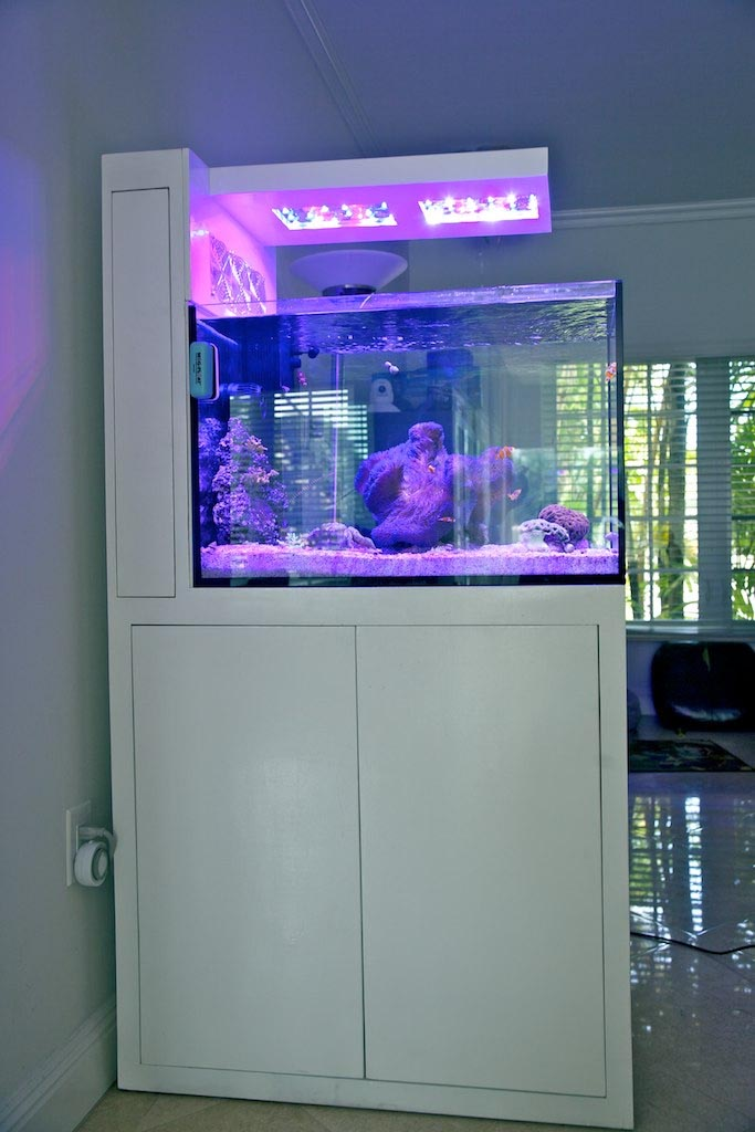 DIY Custom Aquarium Stand