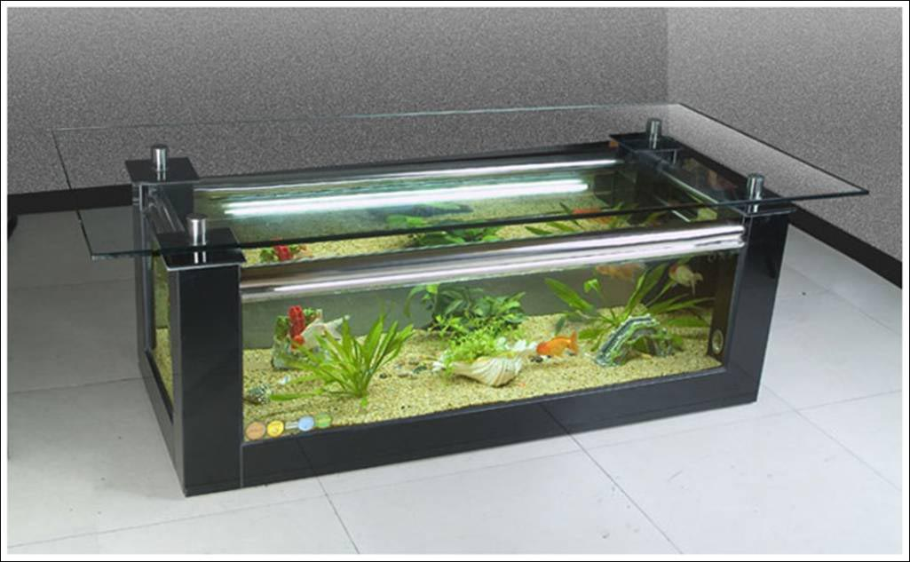 elite coffee table aquarium aquarium design ideas. Black Bedroom Furniture Sets. Home Design Ideas