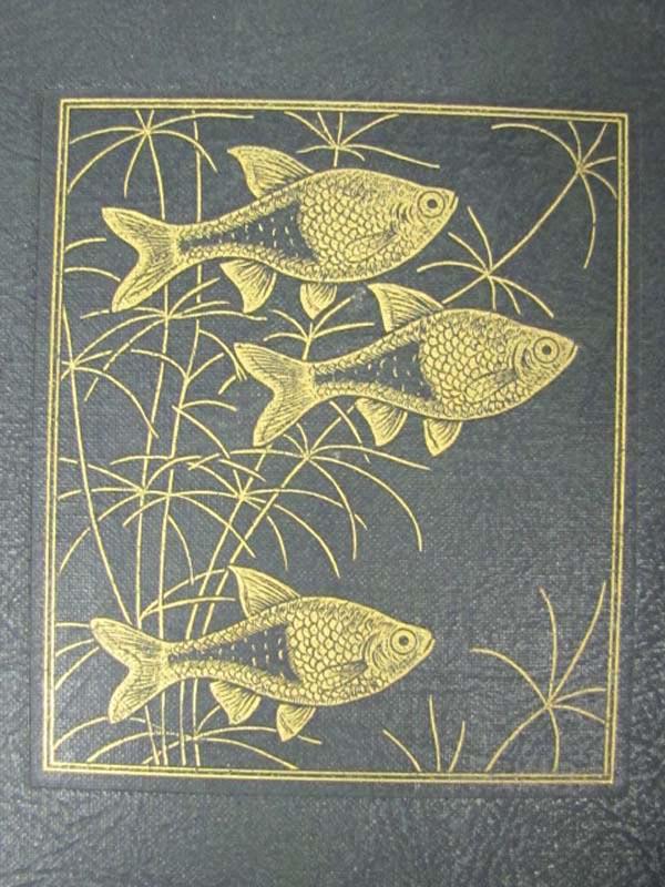 Exotic Aquarium Fishes the Innes Book