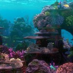 Finding Nemo Coral Reef Aquarium Background
