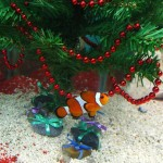 Aquarium fish tank decorations aquarium design ideas - Fish tank christmas decorations ...