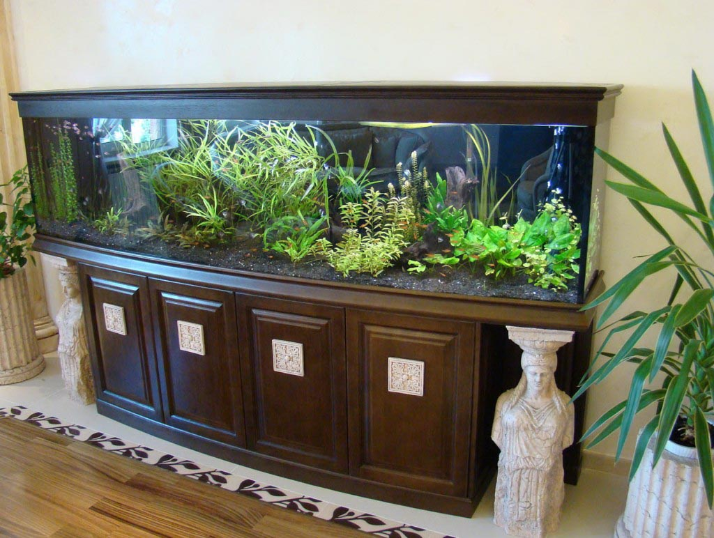 Fish Aquariums with Stands
