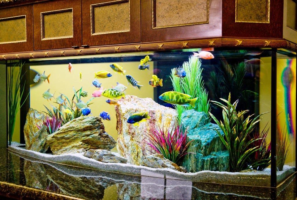 Fish Decoration for Aquarium