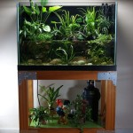 Fish Tank Aquarium with Stand