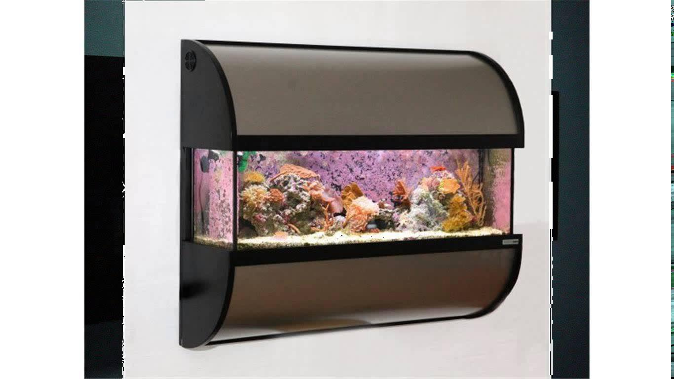 Fish Tank Wall Mounted Aquariums