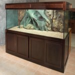 Glass Aquarium 100 Gallon
