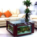Hexagon Coffee Table Aquarium