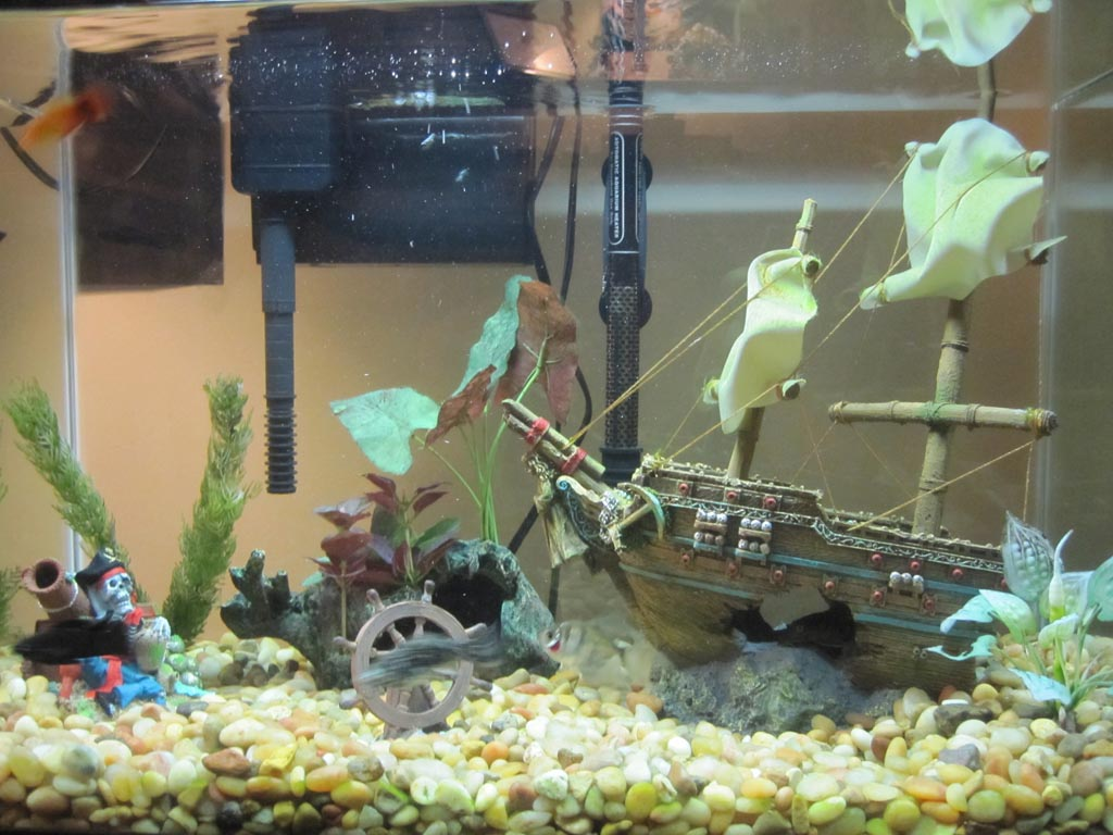 How to Decorate Fish Aquarium