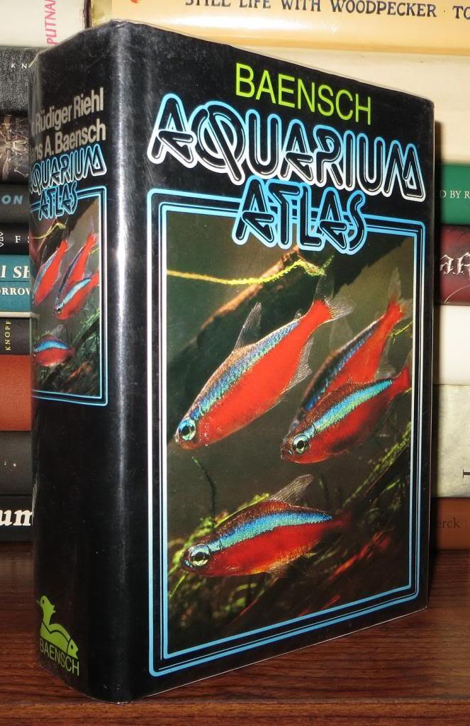 Innes Exotic Aquarium Fishes