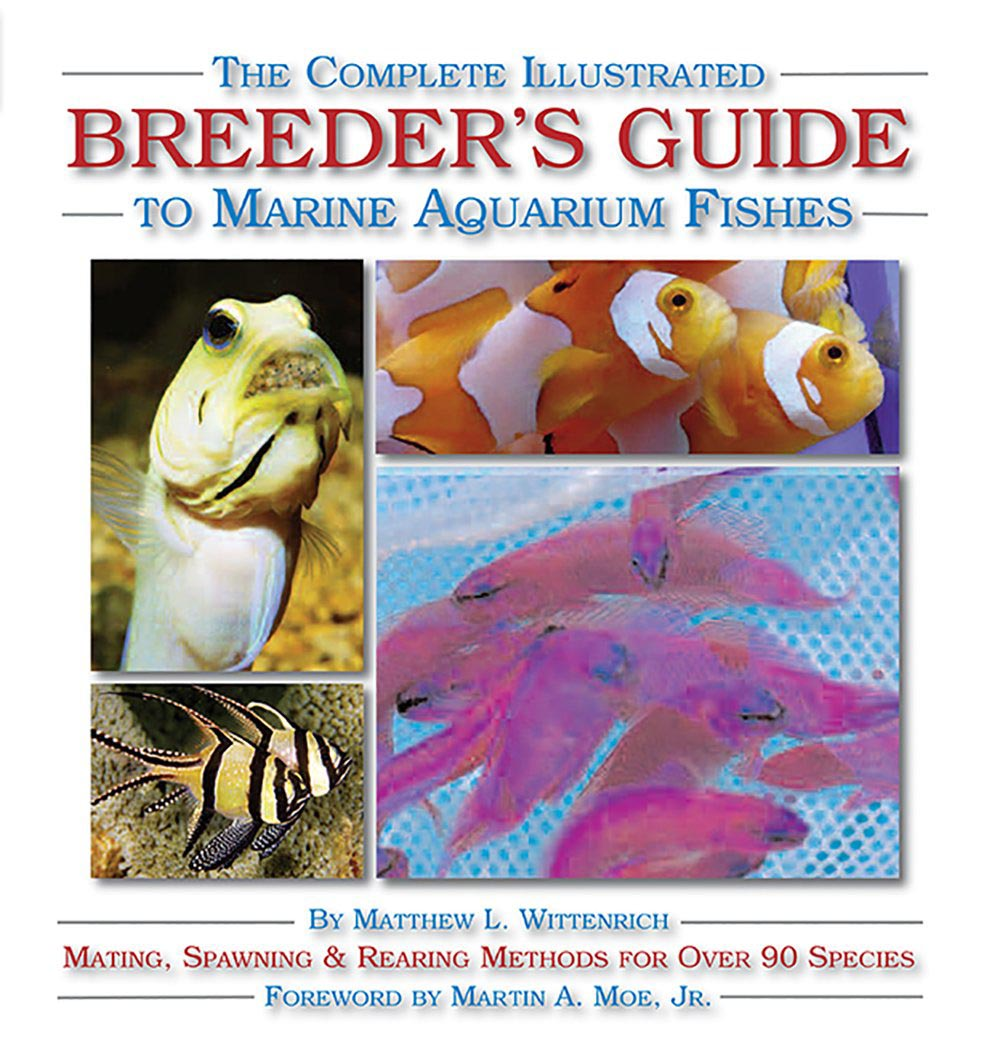 Marine Aquarium Fish Guide
