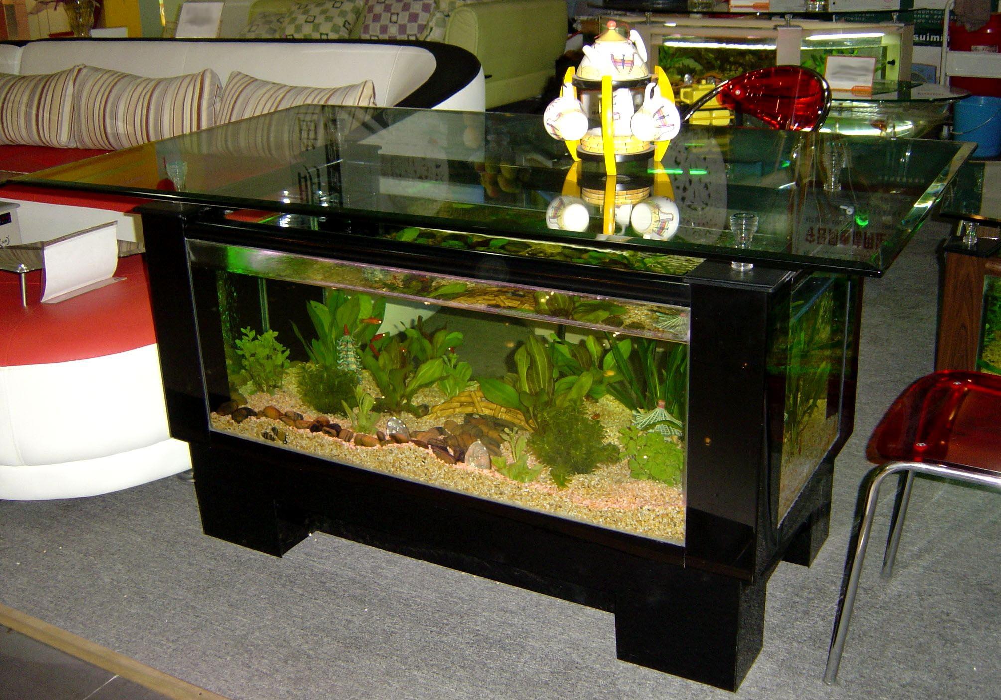 Marine Fish Aquarium Tank