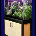 Petsmart Fish Aquarium Stands