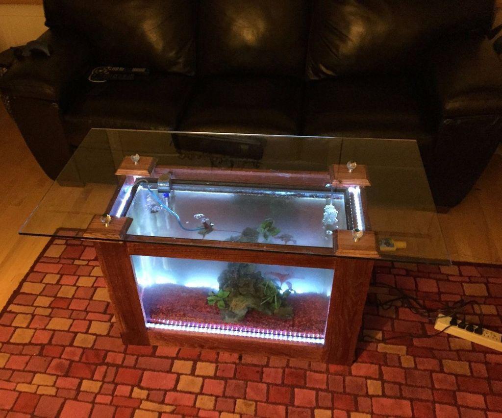Plans Build Coffee Table Aquarium