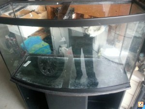 Removing Scratches From Aquarium Glass