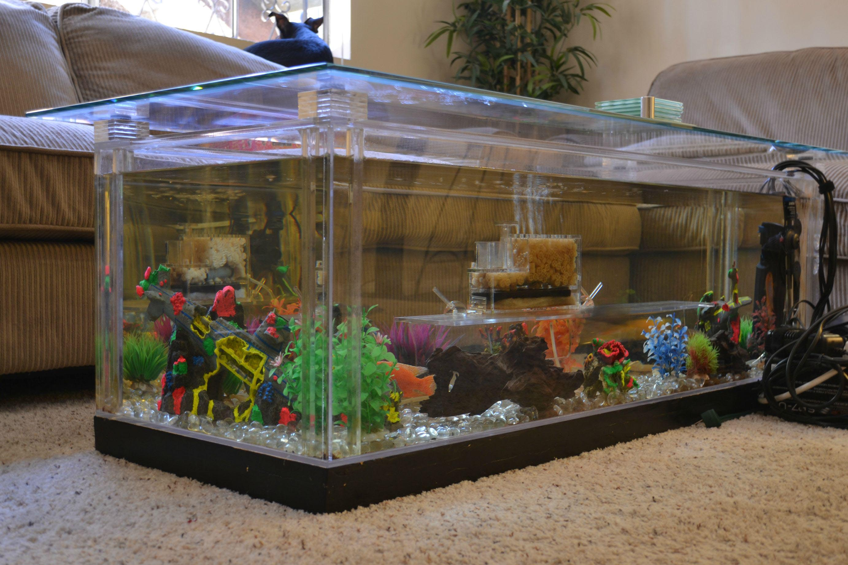 Saltwater Coffee Table Aquarium