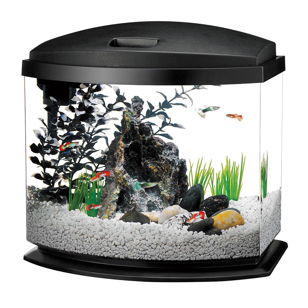 ... Fish Aquarium Exactly What You Need: Saltwater Fish Aquarium Kits