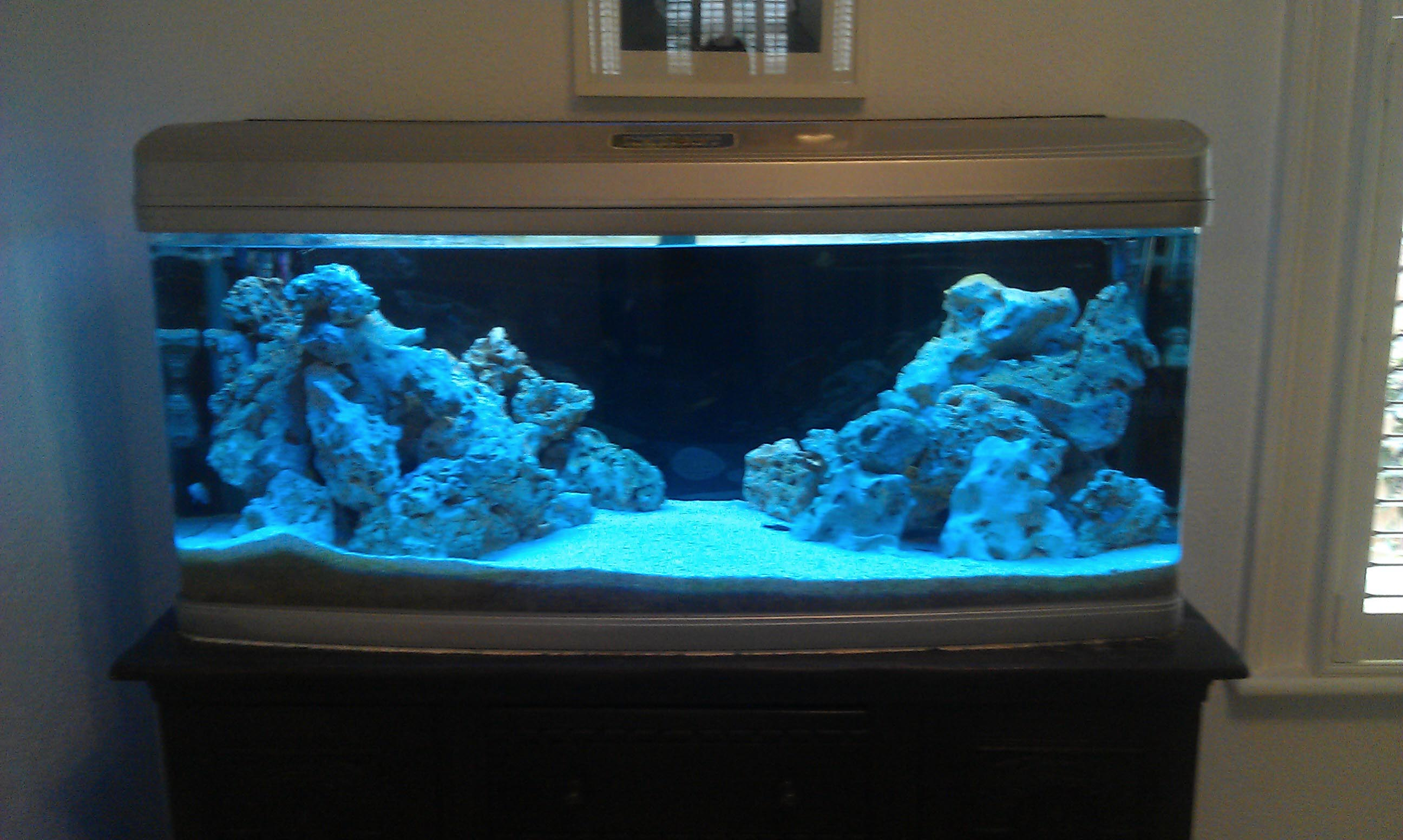 Aquarium fish tank setup for Freshwater fish tank setup