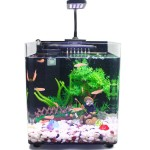 Small Aquarium Fish Tanks
