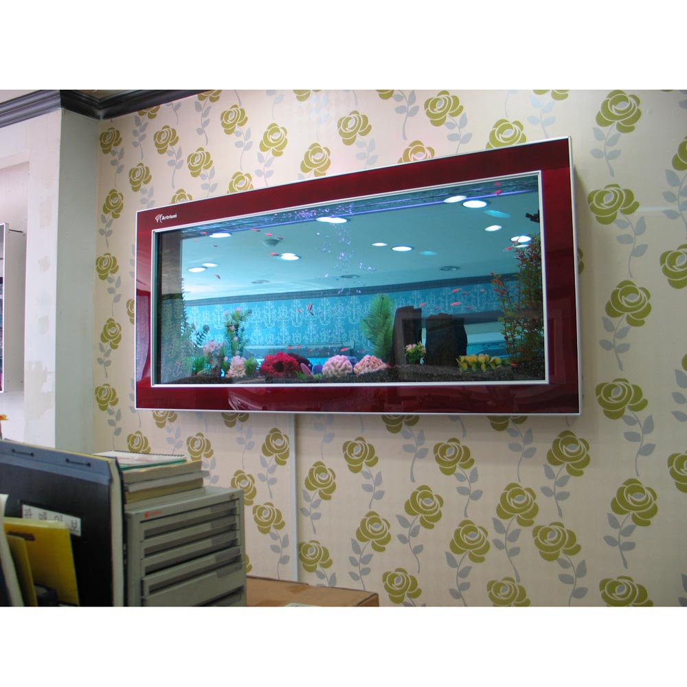 Small Wall Mounted Aquarium