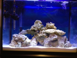 Tap Water Conditioner Salt Water Aquarium
