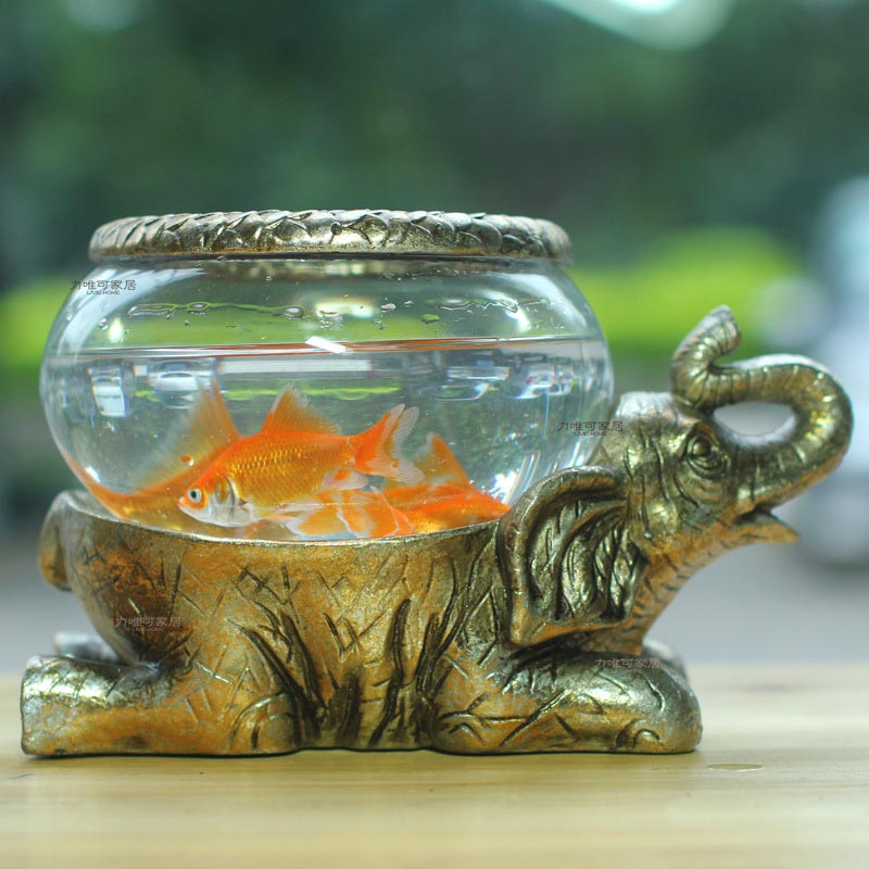 Very small fish for aquarium aquarium design ideas for Good fish for small tanks