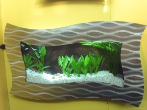 Wall Mounted Aquarium Online