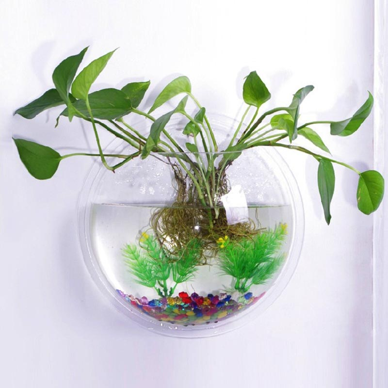 Wall Mounted Aquarium Supplies