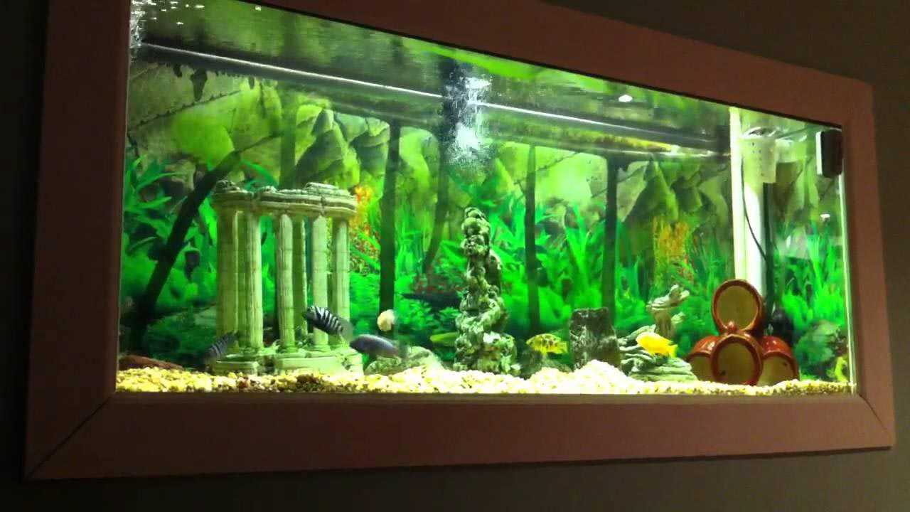 Wall Mounted Bubble Aquarium