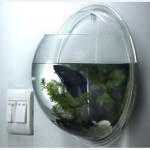 Wall Mounted Fish Bowl Bubble Aquarium