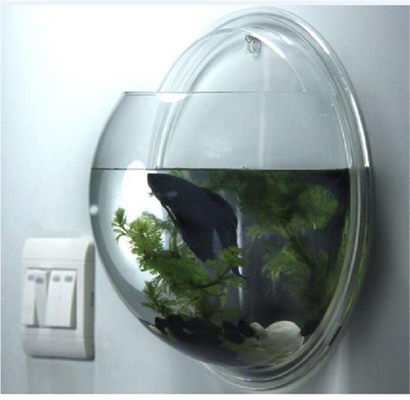 Wall mounted fish bowl bubble aquarium aquarium design ideas - Aquarium wand ...