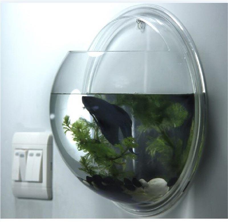 Wall mounted fish bowl bubble aquarium aquarium design ideas for Wall fish bowl