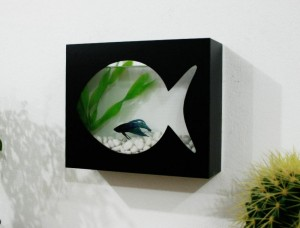 Wall Mounted Shelf for Aquarium